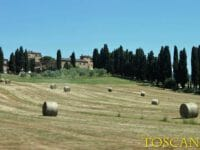Capodanno in agriturismo in Toscana