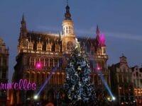 Bruxelles: la Grand Place addobbata per il Natale