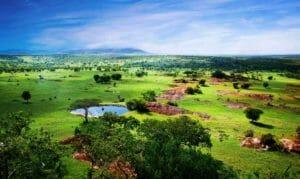 Capodanno in Tanzania, mare e avventura