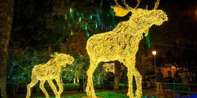 Capodanno a Salerno, le Luci d'Artista