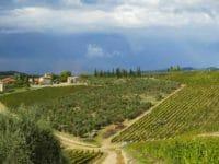Capodanno nel Chianti, le colline