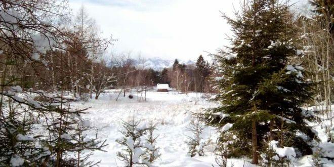 Capodanno in Val di Cembra