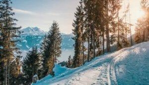 Andare in vacanza in inverno