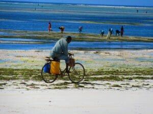 Capodanno a Zanzibar